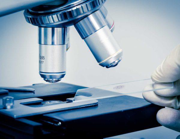 Ansök om stöd till celiakiforskning