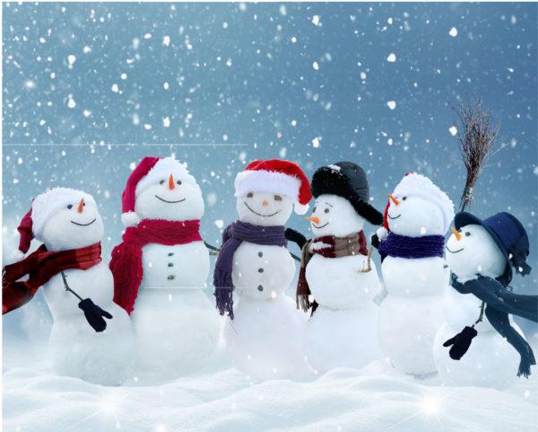 Julledigt på Celiakiförbundets kansli